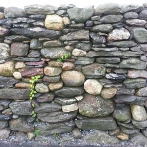 fieldstone wall waltham, ma