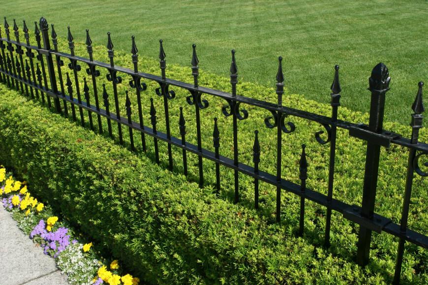Wrought Iron Fence
